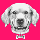 Portrait of Golden Retriever with Collar. Hand Drawn Illustration. Print by  victoria_novak