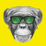 Original Drawing of Monkey with Glasses. Isolated on Colored Background. Poster by  victoria_novak