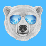 Portrait of Polar Bear with Mirror Sunglasses. Hand Drawn Illustration. Prints by  victoria_novak