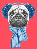 Portrait of Pug Dog with Scarf and Earmuffs. Hand Drawn Illustration. Poster by  victoria_novak