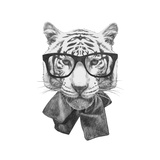Original Drawing of Tiger with Glasses. Isolated on White Background Sztuka autor victoria_novak