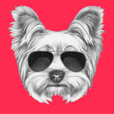 Portrait of Yorkshire Terrier Dog with Sunglasses. Hand Drawn Illustration. Art by  victoria_novak
