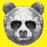 Original Drawing of Bear with Sunglasses. Isolated on Colored Background Premium Giclee Print by  victoria_novak