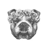Original Drawing of English Bulldog with Floral Head Wreath. Isolated on White Background. Posters by  victoria_novak