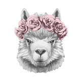 Portrait of Lama with Floral Head Wreath. Hand Drawn Illustration. Giclee-tryk i høj kvalitet af  victoria_novak