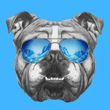 Portrait of English Bulldog Mirror Sunglasses. Hand Drawn Illustration. Print by  victoria_novak
