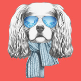 Portrait of Cavalier King Charles Spaniel with Scarf and Sunglasses. Hand Drawn Illustration. Poster by  victoria_novak