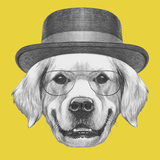 Portrait of Golden Retriever with Glasses and Hat. Hand Drawn Illustration. Art by  victoria_novak
