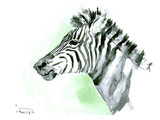 Zebra Prints by Suren Nersisyan