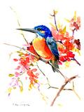 Common Kingfisher Reproduction procédé giclée par Suren Nersisyan