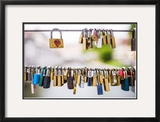 Padlocks, Ljubljana, Slovenia, Europe Framed Photographic Print by Matthew Williams-Ellis