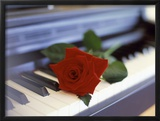 Red Rose on Piano Framed Photographic Print