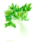Parsley Prints by Suren Nersisyan