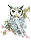 Owl Prints by Suren Nersisyan