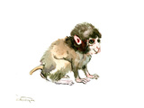Baby Monkey Posters by Suren Nersisyan
