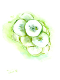 Cucumberss Prints by Suren Nersisyan