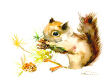 Baby Squirrel Poster by Suren Nersisyan