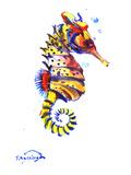 Seahorse Prints by Suren Nersisyan