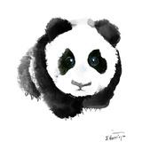 Baby Panda Prints by Suren Nersisyan