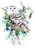 Northern Owl Lámina por Suren Nersisyan