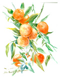 Oranges On Tree Art by Suren Nersisyan