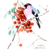 Bullfinch 2 Posters by Suren Nersisyan