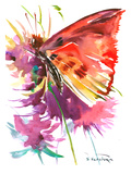 Butterfly Red Posters by Suren Nersisyan