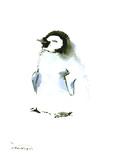 Baby Penguin Posters by Suren Nersisyan