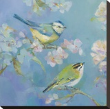 Birds in Blossom - Detail I Stretched Canvas Print by Sarah Simpson