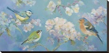 Birds in Blossom Stretched Canvas Print by Sarah Simpson