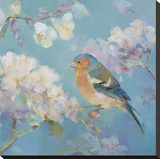 Birds in Blossom - Detail II Stretched Canvas Print by Sarah Simpson