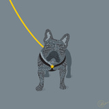French Bulldog on Grey Prints by Dominique Vari