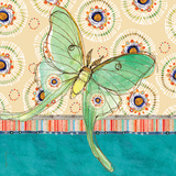Luna Moth Prints by Robbin Rawlings