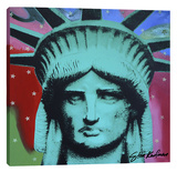 Liberty Head 1 Stretched Canvas Print by Steve Kaufman