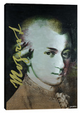 Mozart 6 Stretched Canvas Print by Steve Kaufman