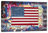 American Flag Stretched Canvas Print by Steve Kaufman