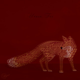 Urban Fox - Red Prints by Dominique Vari