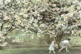 Under the Apple Blossom Tree Print by Betsy Cameron