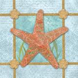 Sea Star Prints by Bee Sturgis