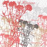 Paris Floral Prints by Bee Sturgis