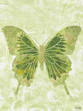 Large Butterfly Posters by Bee Sturgis