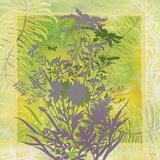 Summer Dream Prints by Bee Sturgis