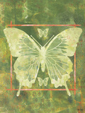Butterfly Triad Prints by Bee Sturgis