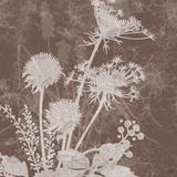 Floral Dusk 2 Print by Bee Sturgis