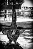 Paris Focus - Public Bench Photographic Print by Philippe Hugonnard