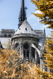 Paris Focus - Notre Dame Cathedral in Autumn Photographic Print by Philippe Hugonnard