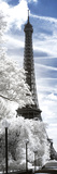 Another Look - Paris Photographic Print by Philippe Hugonnard