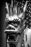 China 10MKm2 Collection - Detail of Dragon Photographic Print by Philippe Hugonnard