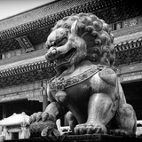 China 10MKm2 Collection - Bronze Chinese Lion in Forbidden City Photographic Print by Philippe Hugonnard