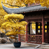 China 10MKm2 Collection - Classical Chinese Pavilion in Autumn Photographic Print by Philippe Hugonnard